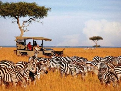 masai-mari1
